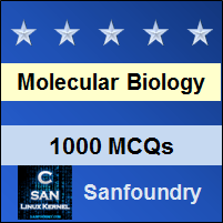 Molecular Biology Questions and Answers