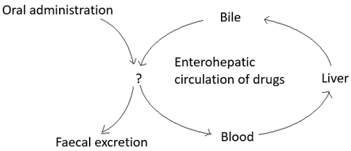 drug-biotechnology-questions-answers-different-routes-excretion-q6