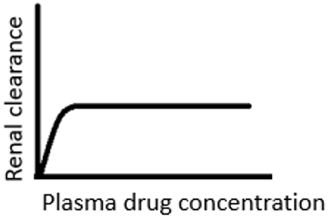 drug-biotechnology-questions-answers-factors-affecting-renal-clearance-q9