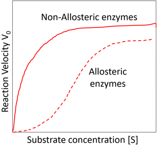 enzyme-technology-questions-answers-allosteric-enzyme-q6