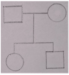 Find the analysis of matings between males and females from the given diagram