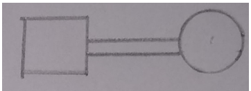 Find the genetic defects from the given diagram