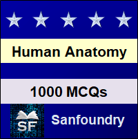 Human Anatomy and Physiology MCQ - Multiple Choice Questions and Answers